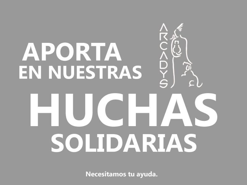 Aporta en las Huchas Solidarias de ARCADYS