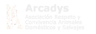 Arcadys logo