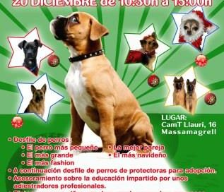 evento_canino_2red